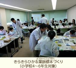 17th_kamo_06