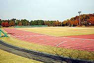 f_campus13_field3