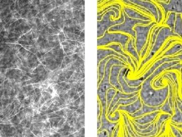 microtubule_eyecatch-720x540