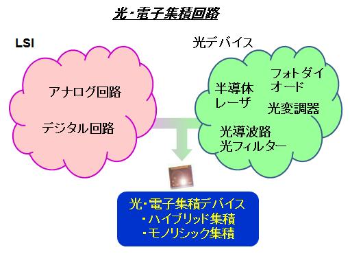 Takahata research img