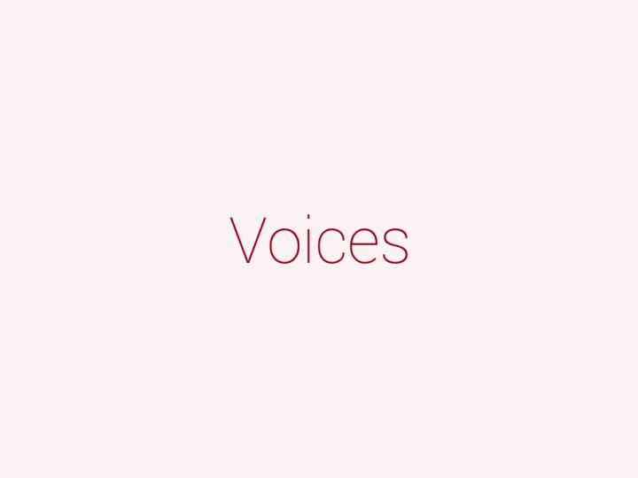 voice_text_panel