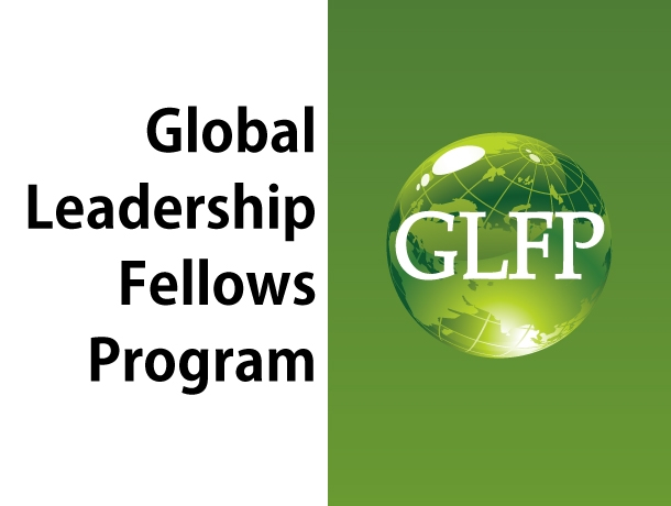 Global Leadership Fellows Program
