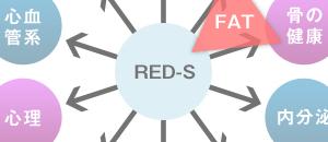 相対的エネルギー不足(RED-S)