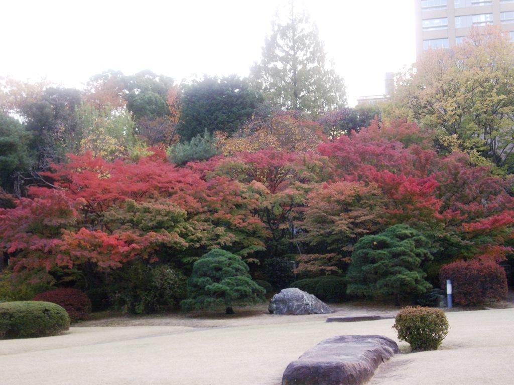 早稲田大学 大隈庭園 : 【穴場】この秋行きたい!東京23区内の ...