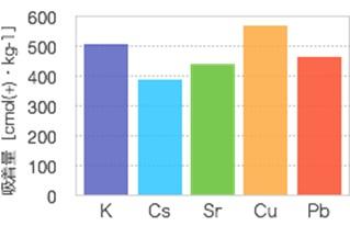 図2 各種イオンの吸着量