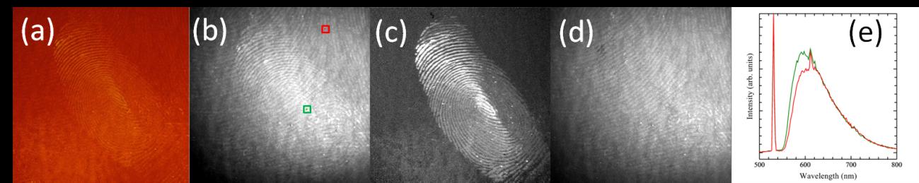図3 壁に潜在する重複した指紋と掌紋の分離に成功した例 グリーンレーザーが励起光源に用いられた。重複した指掌紋の(a)蛍光カラー画像と(b)蛍光スペクトル画像。分離に成功した(c)指紋画像と(d)掌紋画像。(e)典型的な指紋部(緑)と掌紋部(赤)の蛍光スペクトル