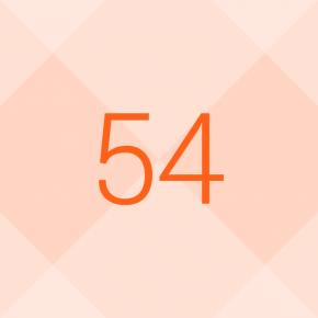 54data_panel