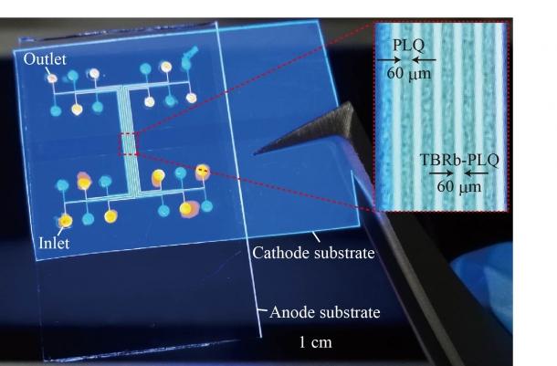 図4 マイクロ流体白色有機ELデバイス