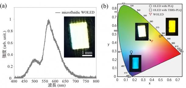 図5 マイクロ流体白色ELの(a)ELスペクトル及び(b)CIE値