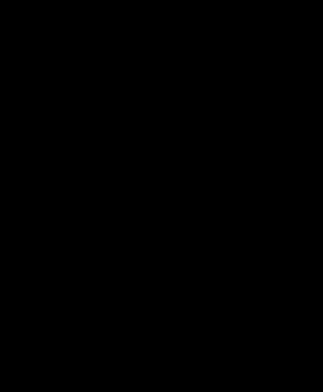 クワの異形葉性の例(同じ枝の中に様々な形状の葉が存在)