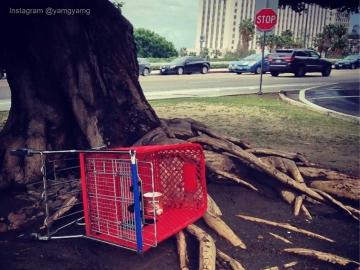 shopping_cart_eyecatch