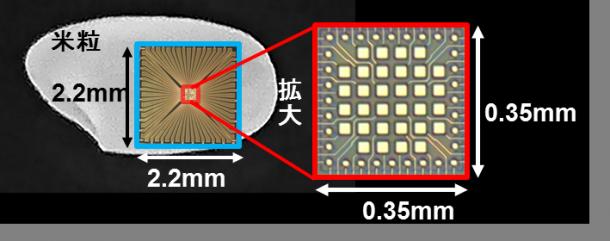 米粒よりはるかに小さい「高速集積型受光素子」(赤い四角)