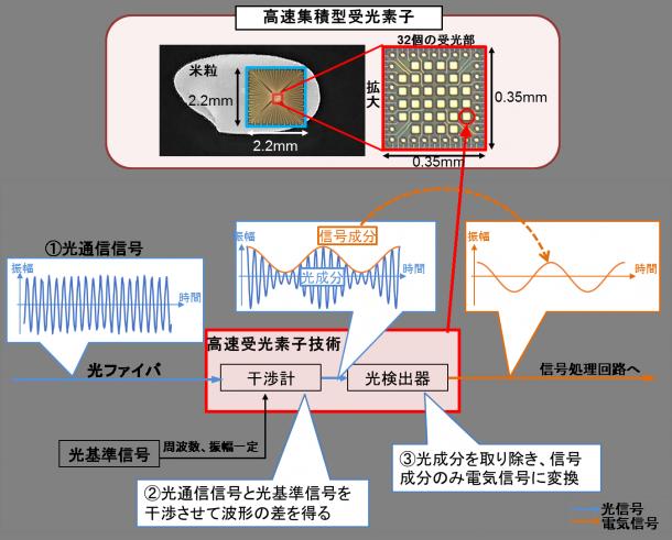 図1:高速集積型受光素子の構造とイメージ