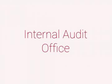 audit_text_panel