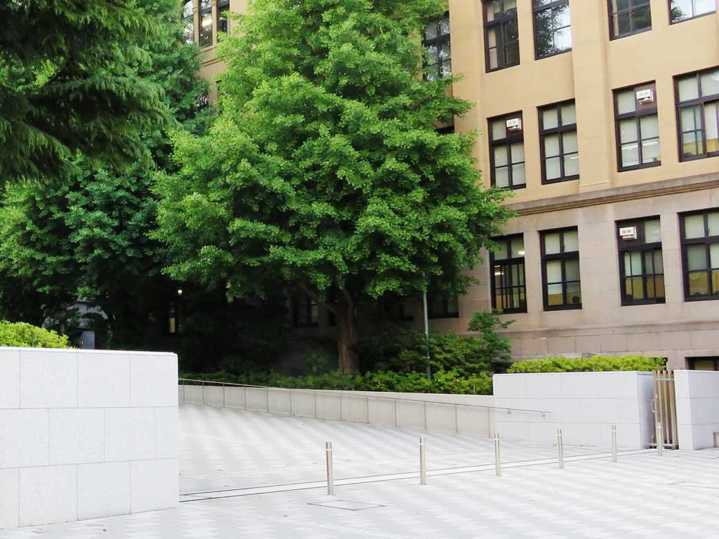 Extension of the Period of Closure of Waseda University