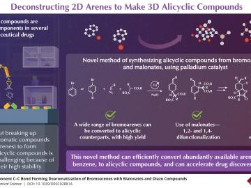 "Novel method can efficiently create several ""building blocks"" of pharmaceutical drugs"