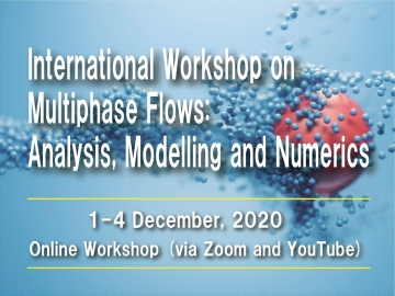 International Workshop on Multiphase Flows: Analysis, Modelling and Numerics